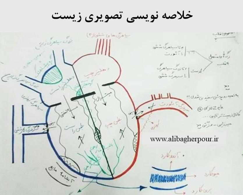 خلاصه نویسی تصویری